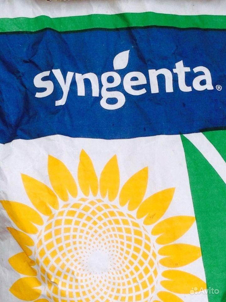 Семена подсолнечника. Импорт syngenta/ pioner/ LG купить на Зозу.ру - фотография № 1