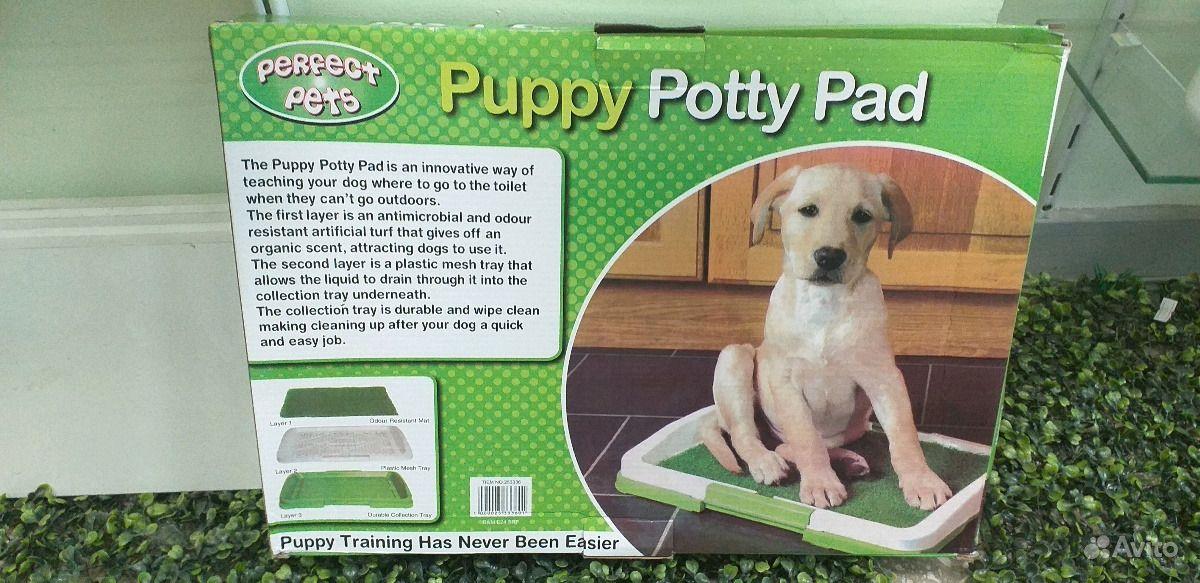Туалет для собак и кошек