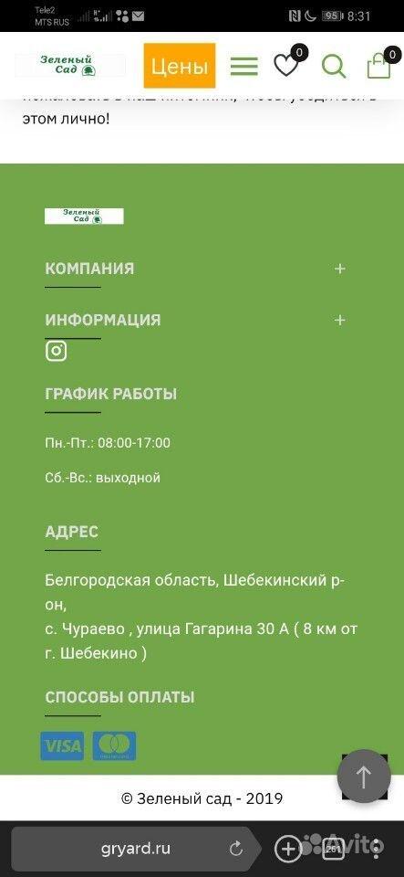 Растения купить на Зозу.ру - фотография № 1