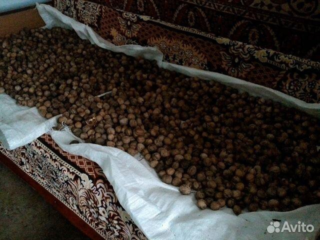 грецкий орех продам в майкопе формами профориентационной работы