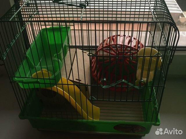 Клетка для попугая и хомяка все в наборах есть. По  89782782376 купить 5