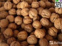 Грецкий орех урожай этого года