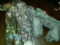 Одежда для собак. Весна-осень